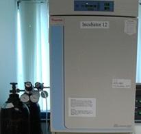 bình khí co2 cho tủ ấm